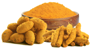 Turmeric power price